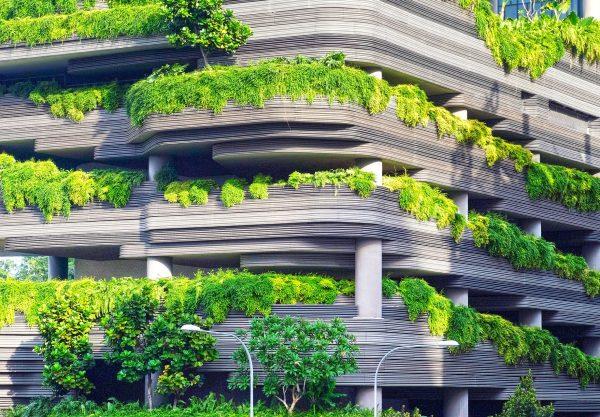 Jak przekształcić mały balkon w oazę na świeżym powietrzu?